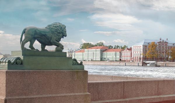 Совместная программа СПбГУ и DAAD «Дмитрий Менделеев». 2021-22 учебный год