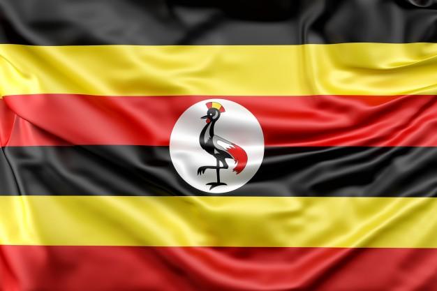 Александр Зданевич: Уганда стала еще одним примером возвращения РФ в Африку